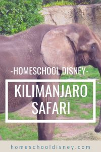 Homeschool Disney: Kilimanjaro Safari